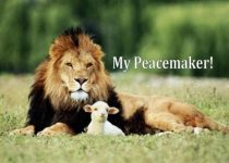 My Peacemaker!